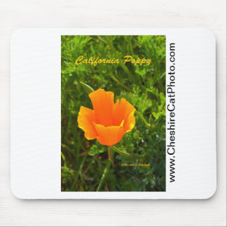 California Poppy California Products Mousepads