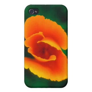 California Poppy iPhone 4/4S Cases