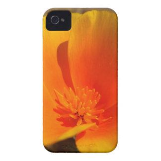California Poppy iPhone 4 Case-Mate ID™