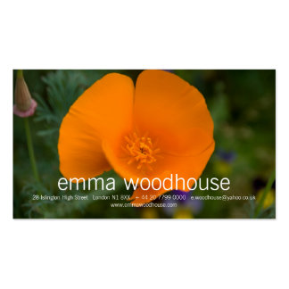 California Poppy Pack Of Standard Business Cards