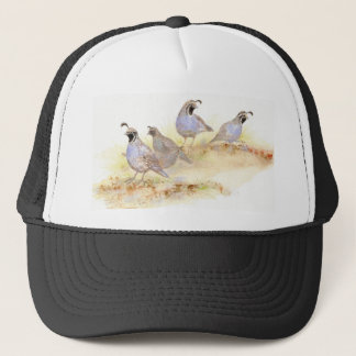California Quail, Birds, Nature, Wildlife, Trucker Hat