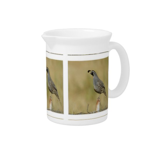 California Quail Drink Pitchers