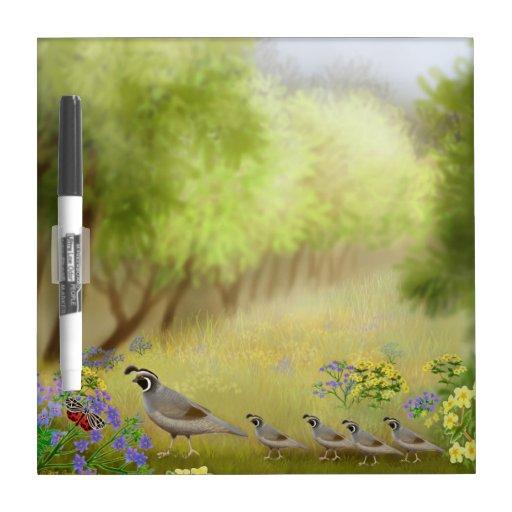 California Quail in Meadow Dry Erase Board