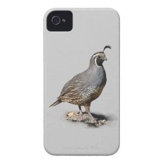 CALIFORNIA QUAIL iPhone 4 CASE