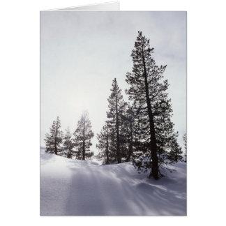 California, Rancho Cuyamaca State Park Card