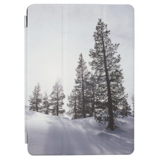 California, Rancho Cuyamaca State Park iPad Air Cover