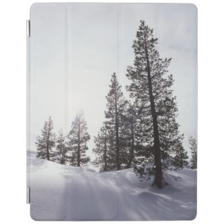 California, Rancho Cuyamaca State Park iPad Cover