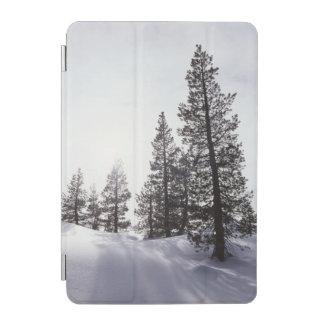 California, Rancho Cuyamaca State Park iPad Mini Cover