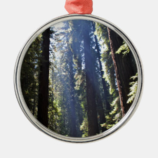 California Redwoods Silver-Colored Round Decoration