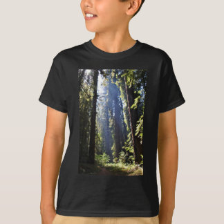 California Redwoods T-Shirt