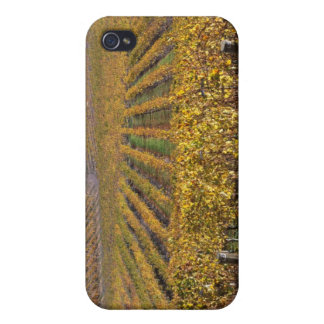 California, San Luis Obispo County, Edna Valley iPhone 4/4S Cover