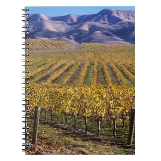 California, San Luis Obispo County, Edna Valley Notebooks