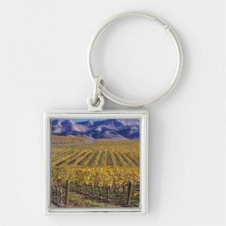 California, San Luis Obispo County, Edna Valley Silver-Colored Square Key Ring