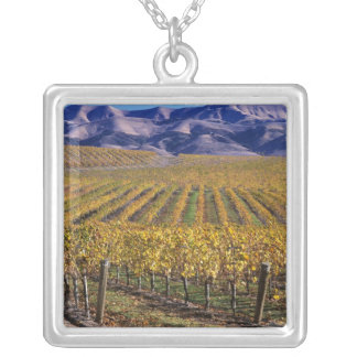 California, San Luis Obispo County, Edna Valley Silver Plated Necklace