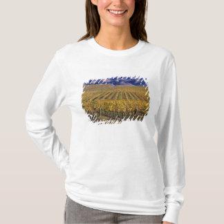 California, San Luis Obispo County, Edna Valley T-Shirt