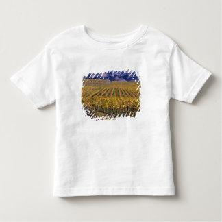 California, San Luis Obispo County, Edna Valley Toddler T-Shirt