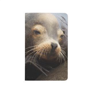 California Sea Lion Resting Journal