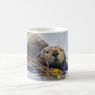 California Sea Otter Coffee Mug