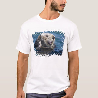 California Sea Otter Enhydra lutris) grooms 2 T-Shirt