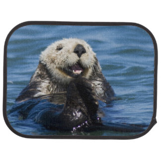 California Sea Otter Enhydra lutris) grooms Car Mat