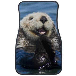 California Sea Otter Enhydra lutris) grooms Car Mat