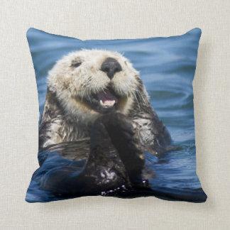 California Sea Otter Enhydra lutris) grooms Cushion