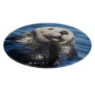 California Sea Otter Enhydra lutris) grooms Cutting Board