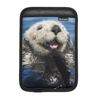 California Sea Otter Enhydra lutris) grooms iPad Mini Sleeve
