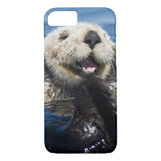 California Sea Otter Enhydra lutris) grooms iPhone 8/7 Case