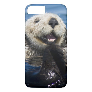 California Sea Otter Enhydra lutris) grooms iPhone 8 Plus/7 Plus Case