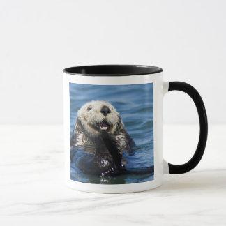 California Sea Otter Enhydra lutris) grooms Mug