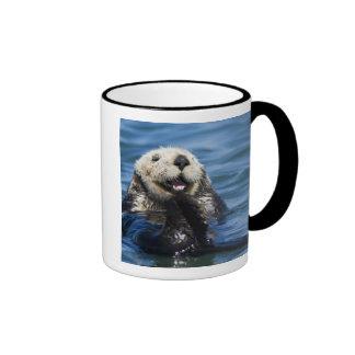 California Sea Otter Enhydra lutris) grooms Ringer Mug
