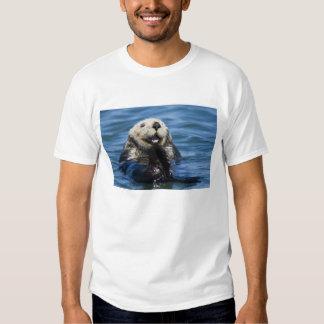 California Sea Otter Enhydra lutris) grooms Tee Shirts