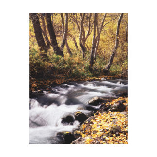 California, Sierra Nevada Mountains 12 Canvas Print
