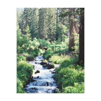 California, Sierra Nevada Mountains 14 Canvas Print