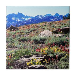 California, Sierra Nevada Mountains 1 Tile