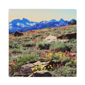 California, Sierra Nevada Mountains 1 Wood Coaster