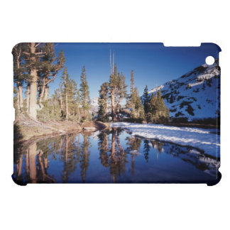 California, Sierra Nevada Mountains 2 Case For The iPad Mini