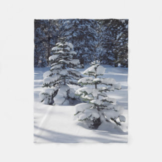 California, Sierra Nevada Mountains 8 Fleece Blanket