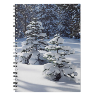California, Sierra Nevada Mountains 8 Notebooks