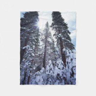 California, Sierra Nevada Mountains 9 Fleece Blanket