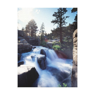 California, Sierra Nevada Mountains, A waterfall Canvas Print