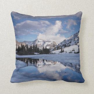 California, Sierra Nevada Mountains, Dana Peak Cushion