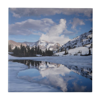 California, Sierra Nevada Mountains, Dana Peak Tile