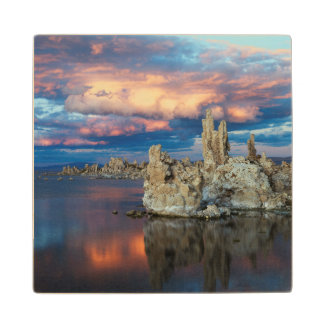 California, Sierra Nevada Mountains Wood Coaster
