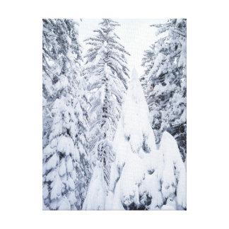 California, Sierra Nevada Mountains, Yosemite 1 Gallery Wrapped Canvas