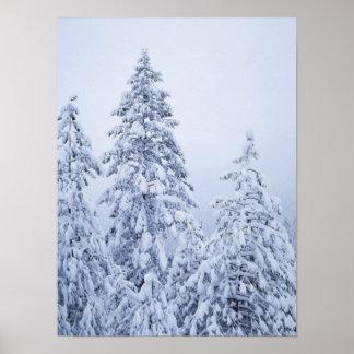 California, Sierra Nevada Mountains, Yosemite 3 Poster