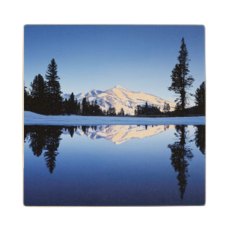 California, Sierra Nevada Mountains, Yosemite 9 Wood Coaster