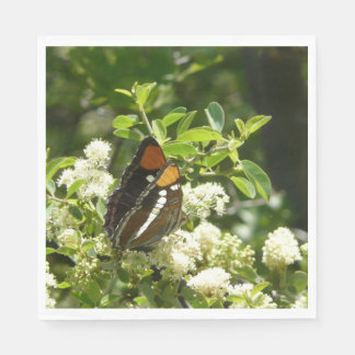 California Sister Butterfly in Yosemite Disposable Napkin