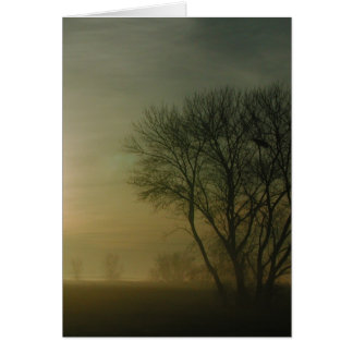 California Sunrise with Tree Photo Note Card
